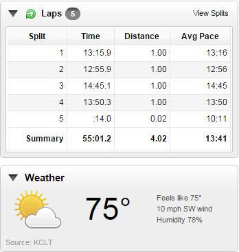 7.4.15 American 4 miler