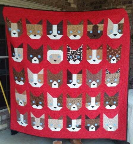 kittens-front-v2